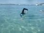 Obóz na wodach otwartych, Maho Bay (Wyspy Dziewicze)